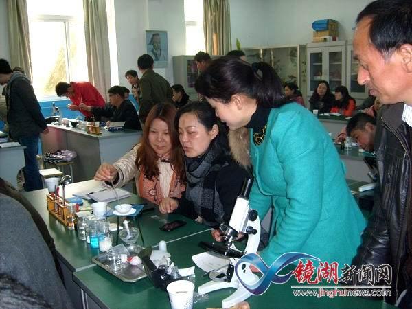 芜湖市小学科学学科实验操作培训活动在镜湖区举行